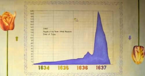 Тюльпаномания в Нидерландах 17 век