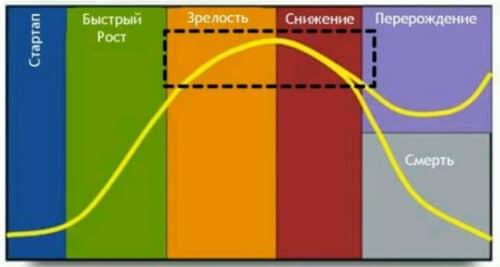 Жизненный цикл бизнеса